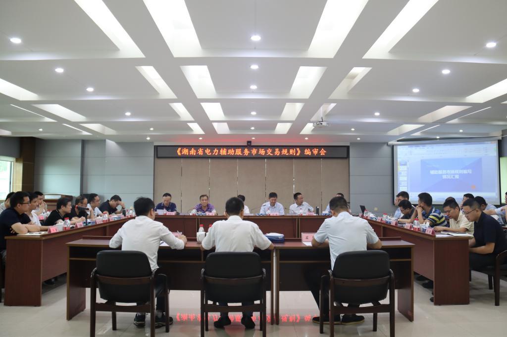 《湖南省电力辅助服务市场交易规则》编审会在株洲航电分公司召开