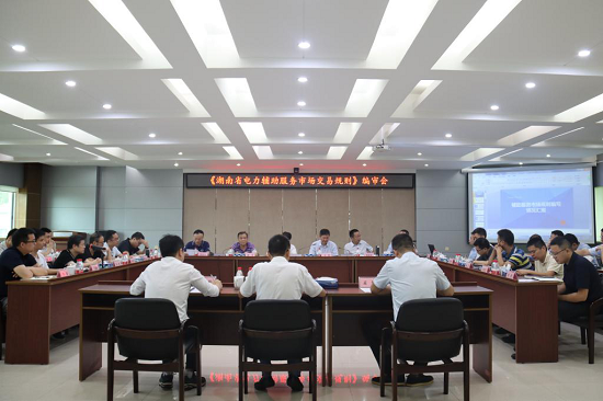 激活电力市场机制 服务湖南经济发展 《湖南省电力辅助服务市场交易规则》编审会召开